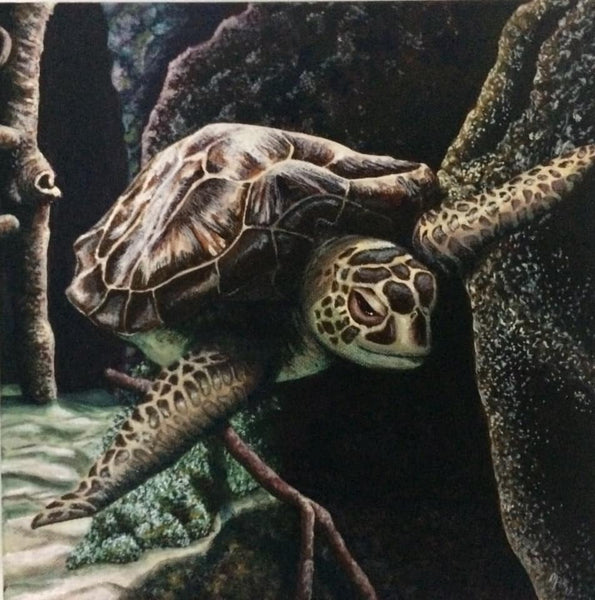 Turtle Original Painting