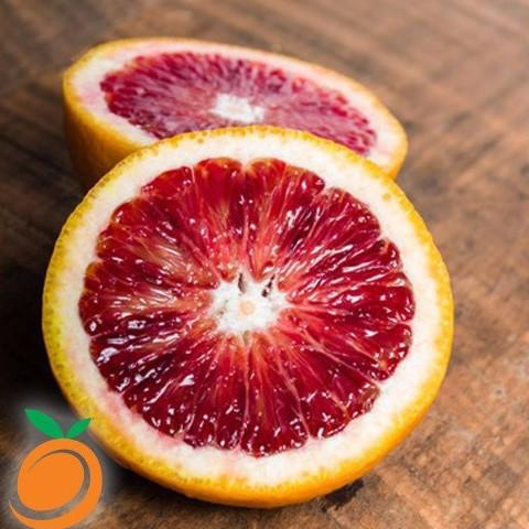 BLOOD ORANGE - REAL FLAVORS-FLAVOURINGS-Infinite Vaper
