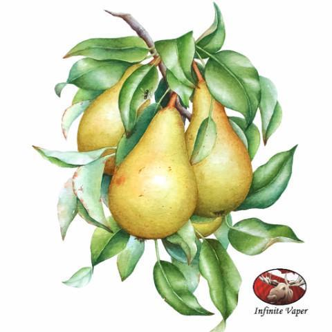 PEAR - FLAVOUR ART-FLAVOURINGS-Infinite Vaper