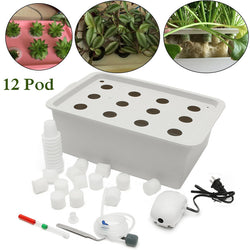 12 Holes Plant Site Hydroponic System