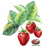 STRAWBERRY - FLAVOUR ART-FLAVOURINGS-Infinite Vaper