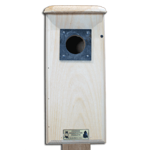 Three Woodpeckers Bird House Front