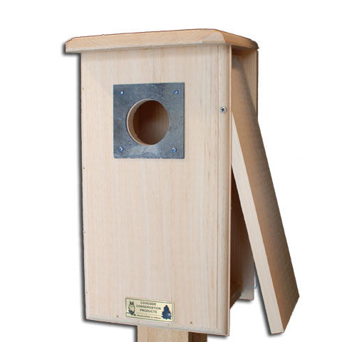Northern Flicker Bird House Open