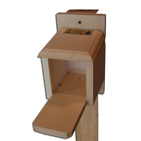 Squirrel Peanut Feeder Box