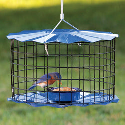Bluebird Mealworm Feeder With Starling-Proof Barrier Guard (Blue)