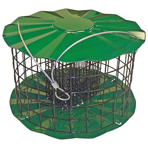 Metal Double Suet Feeder