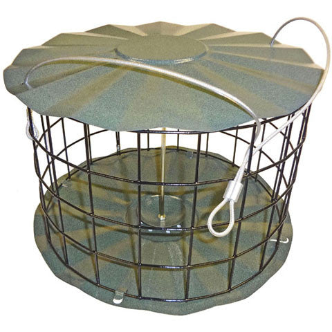 Dove Proof Bird Feeder