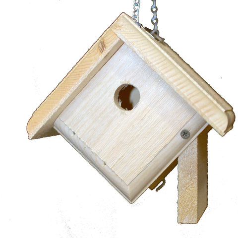 House Wren Bird House Open