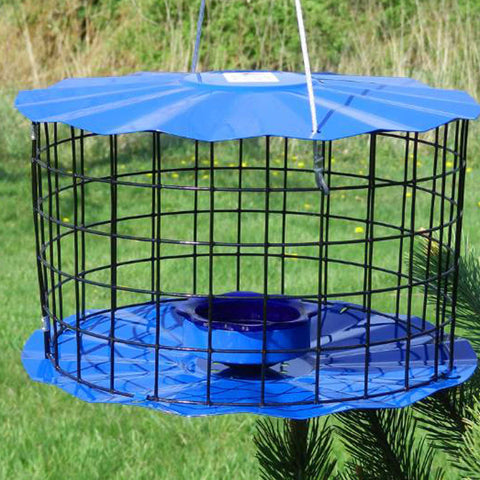Round steel Bluebird Feeder for mealworms