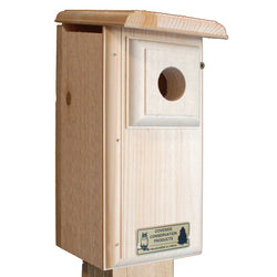 Two-Sided Observation Bluebird House