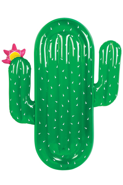Blow Up Inflatable Pool Float - Cactus - Work Home Play