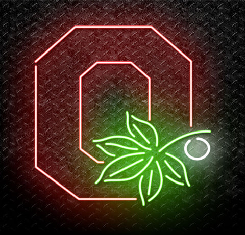NCAA Ohio State Buckeyes Neon Sign