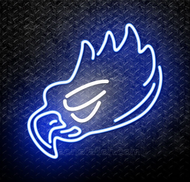 NCAA Florida Gulf Coast Eagles Logo Neon Sign