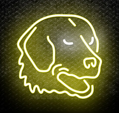 NCAA Umbc Retrievers Logo Neon Sign