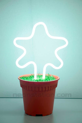 Potted Plant Star Neon Sign