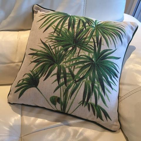 Cushion tropical palm trees on a white background