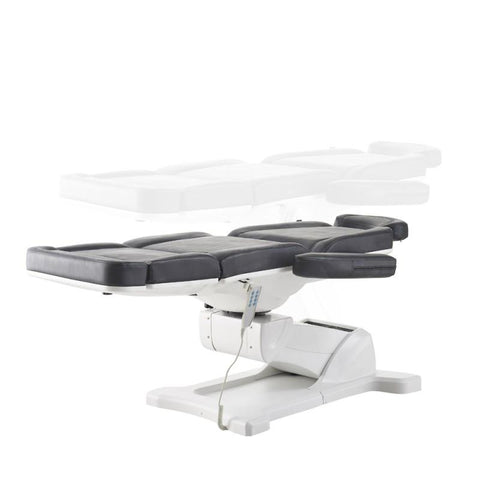 Dream In Reality DIR Pavo - Full Electrical with 4 Motors Black Facial Beauty Bed & Chair Facial Chairs - ChairsThatGive
