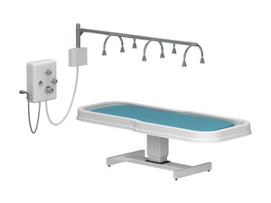 Touch America Touch America Neptune Battery Vichy Shower & Wet Table Package Deal Wet Tables & Showers - ChairsThatGive