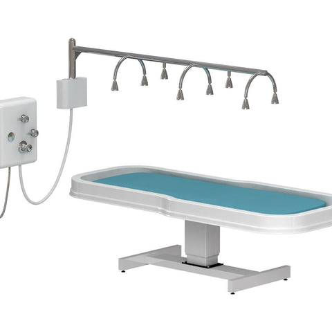 Image of Touch America Touch America Neptune Stationary Vichy Shower & Wet Table Package Deal Wet Tables & Showers - ChairsThatGive