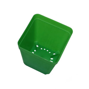 Mini Square Plant Flower Pot 50 Pcs
