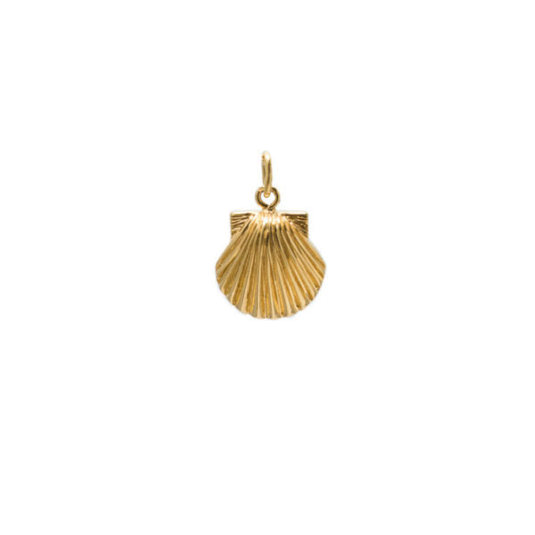 Pendant Seashell Gold Plated