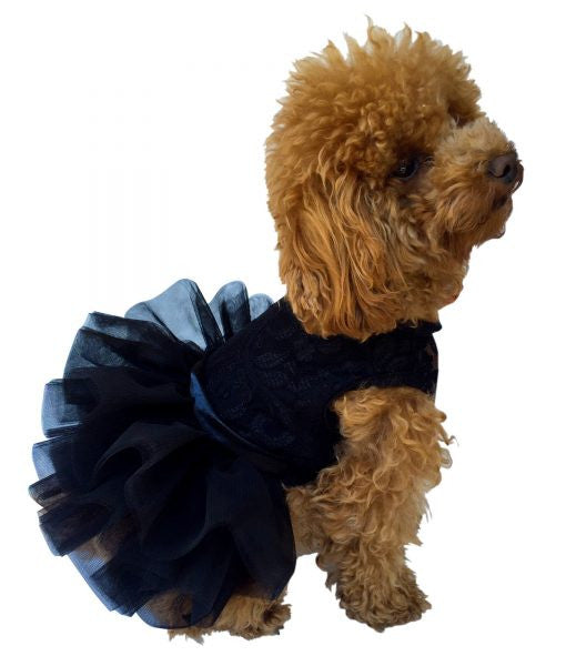 Fufu Tutu Lace, Black - Dawn's Doggy Duds
