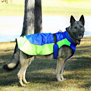 Doggie Design Alpine All-Weather Dog Coat - Blue and Green