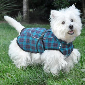 Alpine Flannel Dog Coat - Flannel Navy Blue and Turquoise Plaid - Dawn's Doggy Duds