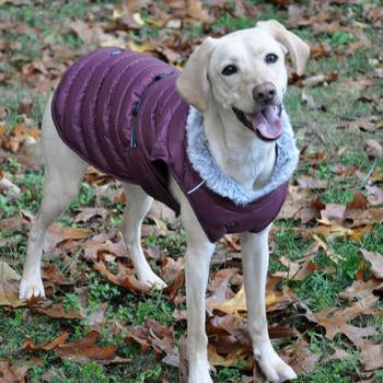 Doggie Design Alpine Extreme Weather Puffer Dog Coat - Burgundy