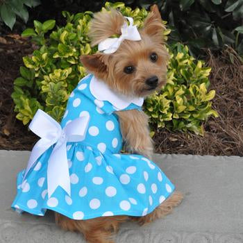 Blue Polka Dot Dog Dress with Matching Leash - Dawn's Doggy Duds