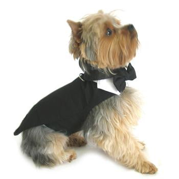 Black Dog Harness Tuxedo w/Tails, Bow Tie, and Cotton Collar - Dawn's Doggy Duds