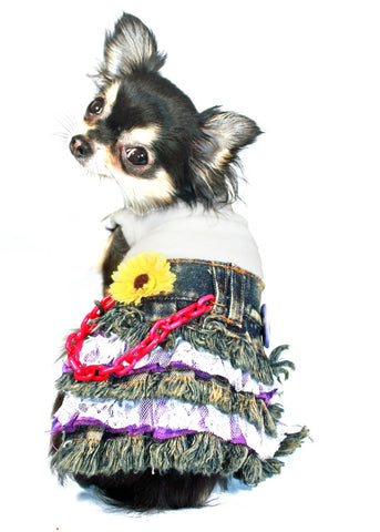 Daisy Denim Mini - Dawn's Doggy Duds