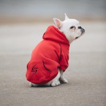 Doggie Design Sport Dog Hoodie - Flame Scarlet Red