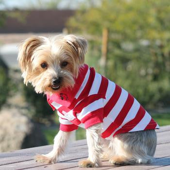 Striped Dog Polo - Flame Scarlet Red and White - Dawn's Doggy Duds