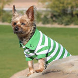 Striped Dog Polo - Greenery and White - Dawn's Doggy Duds