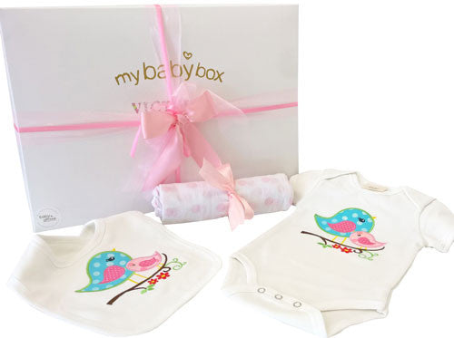 Baby Clothing Hamper - Sweet Birds Body Suit and Bib