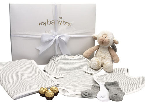 Baby Hamper - Unisex Clothing Set Bib, Onesie, Blanket and lamb