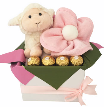 Baby Girl Baskets Pippins Lamb