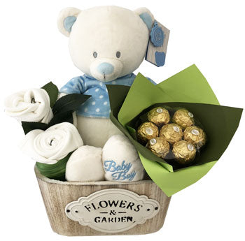 Blue Teddy Baby Boy Basket