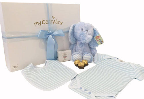 Baby Boy Hamper - Snugem Elephant and clothing set