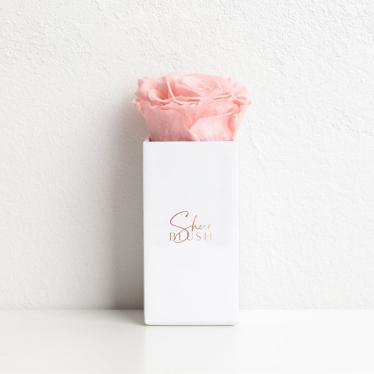 The Taupe Infinity Rose Geschenkset (Blush)