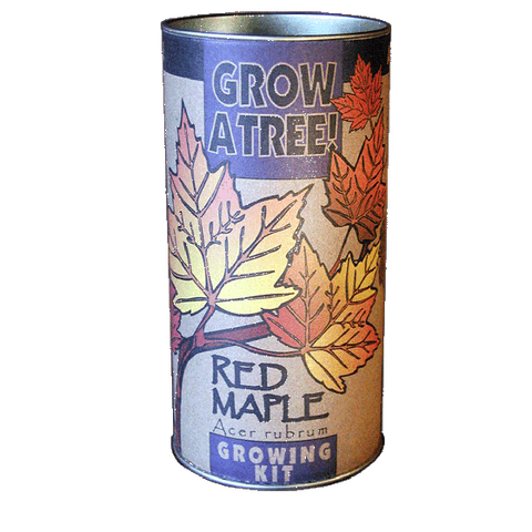 The Jonsteen Company - Red Maple Grow Kit