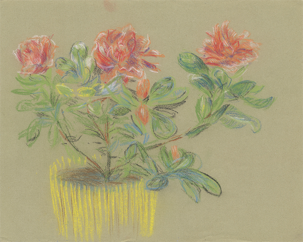 Roses, Undated, Pastel on Laid Paper, 9 1/2 in x 11 7/8 in