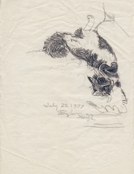 Zelda, 1977, Graphite on Paper, 10 7/8 in x 8 3/8 in
