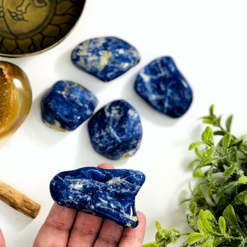 Blue Sodalite Tumbled Stones Chips Gemstones - Polished Stones - Jewelry supplies - Arts and Crafts