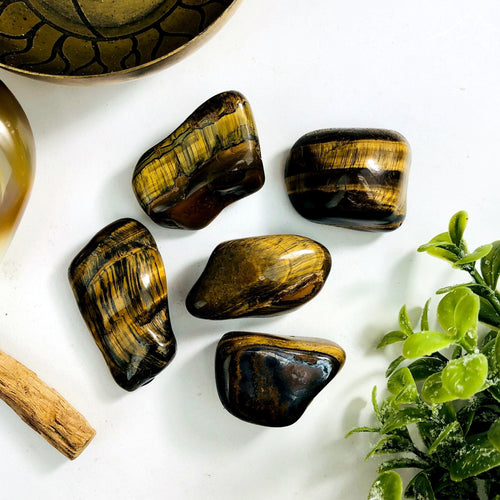 Tiger Eye Tumbled Stones - Large Polished Tigers eye - Choose 1,3,5,10  Stones (TS-85)
