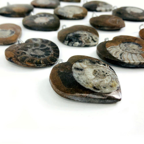 Ammonite Heart Pendants with Silver Toned Bail (RK400B5)