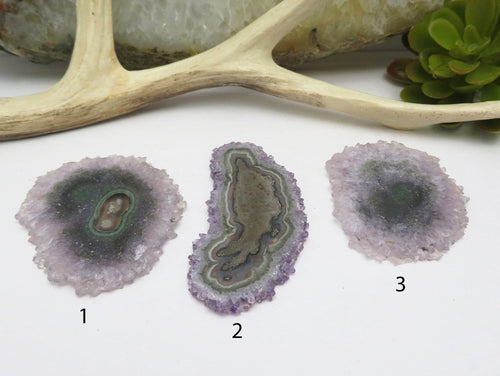 Stalactite Slices - YOU CHOOSE - Beautiful Formation of Nature - Jewelry Making (DOB2-25)
