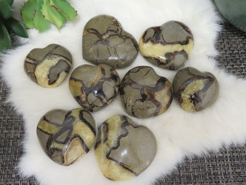 Septarian Heart - Polished Heart Shaped Stone - YOU CHOOSE SIZE - Dragon Stone (RK140)