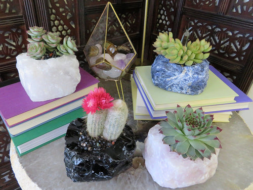 Rough Natural Stone Plant Holder - Choose Your Stone Pot - Home Decor (HW2)
